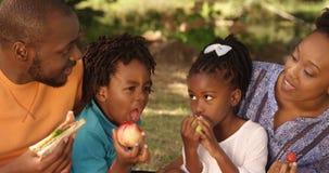 O retrato da família bonito está comendo em um parque filme