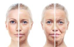 O retrato da mulher 20,40,60 anos velho. Imagens de Stock Royalty Free