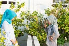 O retrato de duas mulheres irritadas do hijab tem desacordos com vizinhos fotos de stock royalty free