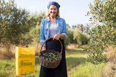 O retrato de feliz da terra arrendada da mulher colheu azeitonas na cesta Imagens de Stock Royalty Free