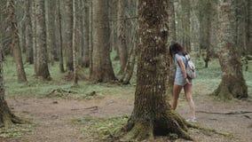 O retrato de uma mulher feliz na floresta, menina aprecia a madeira, turista com a trouxa no parque nacional, estilo de vida do c filme