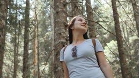 O retrato de uma mulher feliz na floresta, menina aprecia a madeira, turista com a trouxa no parque nacional, estilo de vida do c video estoque