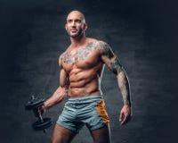 O retrato do estúdio da cabeça barbeada descamisado atlética tattooed o homem foto de stock royalty free