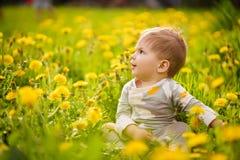 O retrato do jogo adorável do bebê exterior nos dentes-de-leão ensolarados coloca Imagem de Stock Royalty Free