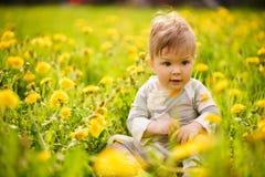 O retrato do jogo adorável do bebê exterior nos dentes-de-leão ensolarados coloca Imagens de Stock