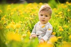 O retrato do jogo adorável do bebê exterior nos dentes-de-leão ensolarados coloca Fotografia de Stock