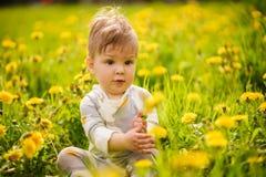 O retrato do jogo adorável do bebê exterior nos dentes-de-leão ensolarados coloca Imagens de Stock Royalty Free