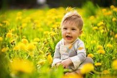 O retrato do jogo adorável do bebê exterior nos dentes-de-leão ensolarados coloca Fotos de Stock