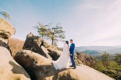 O retrato dos pares românticos do recém-casado que levantam no penhasco rochoso com montanha ajardina como o backround Fotografia de Stock Royalty Free