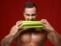 O retrato próximo de homens musculares fortes do atleta morde o aipo fresco Imagens de Stock Royalty Free