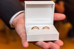 O ringbearer apresenta as alianças de casamento Fotografia de Stock Royalty Free