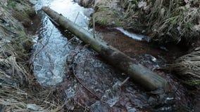 O rio é lavado por um tronco de árvore caído video estoque