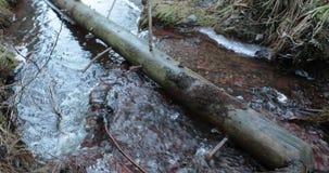O rio é lavado por um tronco de árvore caído filme