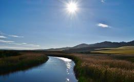 O rio Fotografia de Stock Royalty Free
