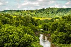 O Rio Amarelo surpreendente Forest Park Imagens de Stock Royalty Free