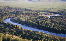 O rio através de um pântano Fotos de Stock