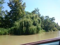 O rio búlgaro Amazonka Fotos de Stock