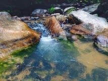 o rio bonito do córrego caiu refrescamento e calma Fotografia de Stock Royalty Free