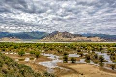 O Rio Brahmaputra Fotos de Stock