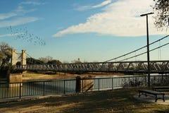 O Rio Brazos, Waco Texas fotos de stock royalty free