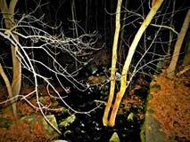 O rio brilhante Imagem de Stock