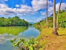 O rio Camu na casa de campo Montellano perto de Puerto Plata imagens de stock royalty free