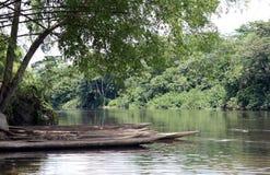O Rio Congo imagens de stock royalty free