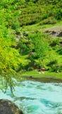 O rio da montanha Imagens de Stock