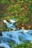 O rio da montanha Fotografia de Stock Royalty Free