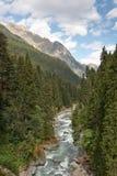 O rio da montanha Fotografia de Stock