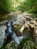 O rio da montanha corre através dos penhascos nos desfiladeiros com a cachoeira verde grossa da floresta no rio da montanha foto de stock royalty free
