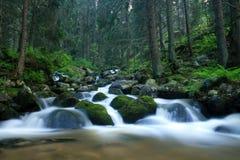 O rio da montanha em Rila Fotos de Stock Royalty Free