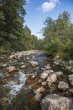 O rio da montanha nas montanhas de Ural Imagem de Stock
