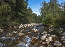 O rio da montanha nas montanhas de Ural Fotografia de Stock