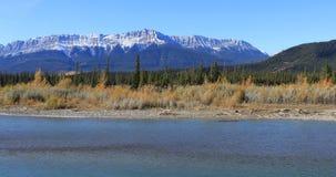O rio de Athabasca nas montanhas rochosas aproxima o jaspe 4K video estoque