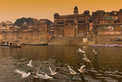 O rio de Ganges. India Fotografia de Stock