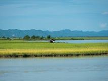 O rio de Kaladan em Myanmar Fotos de Stock Royalty Free
