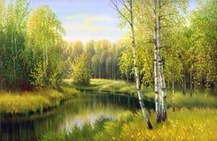 O rio de madeira Fotografia de Stock