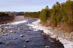 O rio de Niva no início de maio foto de stock