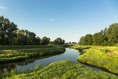 O rio de Oasi Foto de Stock Royalty Free