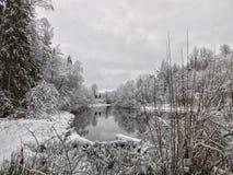 O rio de Oredezh Fotos de Stock