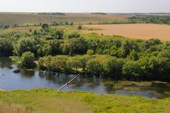 O rio de Zusha com árvores verdes, o prado verde e os campos amarelos veem Imagem de Stock Royalty Free
