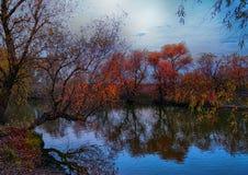 O rio Dniester Imagem de Stock Royalty Free