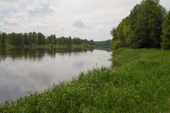 O rio do erro Fotos de Stock Royalty Free