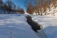 O rio do inverno com neve Imagens de Stock