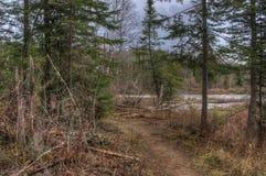 O rio do pombo corre através do parque estadual grande e da reserva indígena de Portage É a beira entre Ontário e Minnesota foto de stock