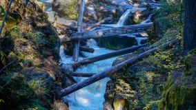 O rio do vermelho cai sobre rochas e através de um desfiladeiro imagens de stock
