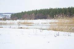 O rio e a floresta do inverno ajardinam no condado fotos de stock royalty free
