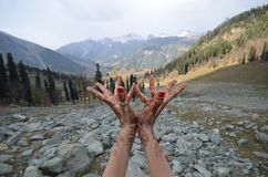 O rio em Kashmir Fotografia de Stock