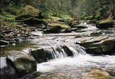 O rio em montanhas Carpathian. Fotografia de Stock Royalty Free